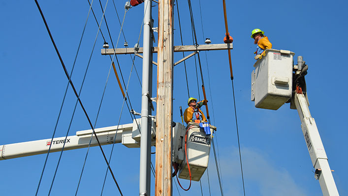Two public workers working on utility poles